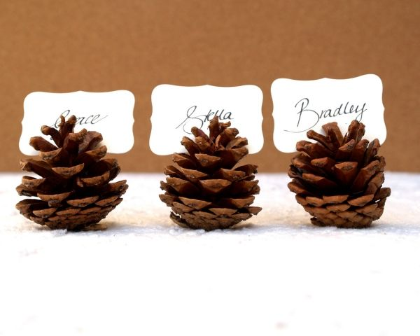 rustic Christmas table decoration ideas place card holders pinecones