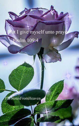 Psalm 109:4  Pray by praising Jesus!