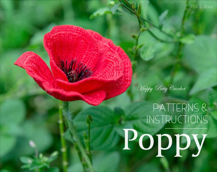 Crochet Poppy Pattern - Crochet Flower Pattern - Poppy Flower Pattern - Crochet Flanders Poppy by HappyPattyCrochet on Etsy https://www.etsy.com/listing/384562990/crochet-poppy-pattern-crochet-flower