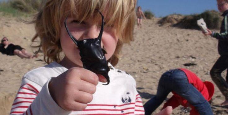 10 idées de sorties nature en Vendée avec les enfants dès les premiers rayons de soleil !