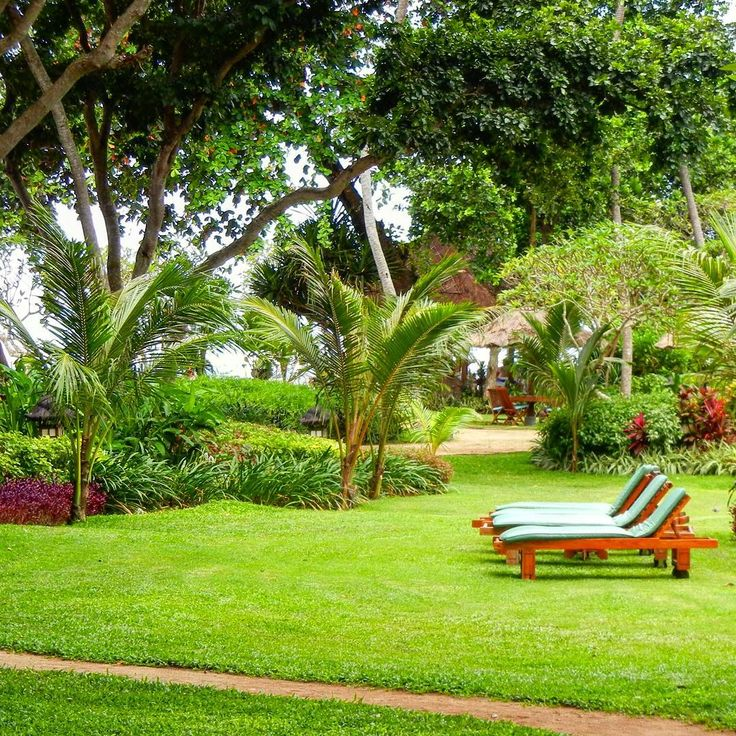 The green, green gardens of Bali get me every time!! The beach is just beyond the trees & the pool boy is never far away! Bali Hyatt Sanur. . .