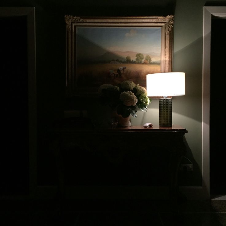 Ortensia. Di notte.