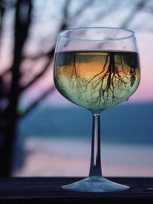 Best 25 Cool wine glasses ideas on Pinterest Best wine glasses