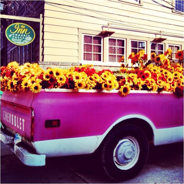 1000+ Images About Vintage Trucks On Pinterest