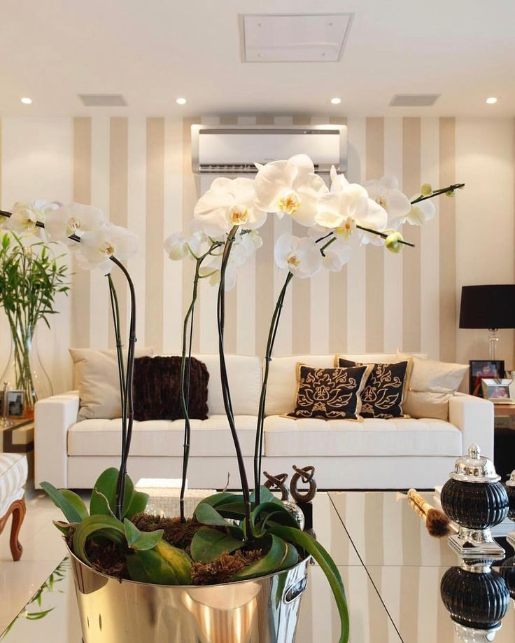 Clean delicado e belo. Amei! Projeto Claudia Pimenta Via @maisdecor_ www.homeidea.com.br Face: /homeidea Pinterest: Home Idea #pontodecor #maisdecor #projetos #igers #arquitetura #ambiente #archdecor #homeidea #archdesign #projetos #tbt #home #homedecor #pontodecor #homedesign #photooftheday #love #interiordesign #interiores #cute #construcao #decoration #world #lovedecor #architecture #archlovers #inspiration #project #cozinha