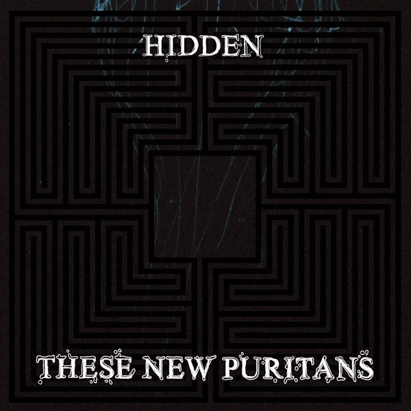 """2010 NME Album of the Year: """"Hidden"""" by These New Puritans - listen with YouTube, Spotify, Rdio & Deezer on LetsLoop.com"""