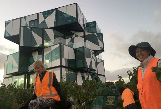 FOR leading Australian winemaker Chester Osborn it's the realisation of a 13-year dream, but for South Australia's McLaren Vale wine region Chester's Cube could bring tens if not hundreds of thousands more wine tourists to visit one of the world's most unusual and dramatic cellar doors.