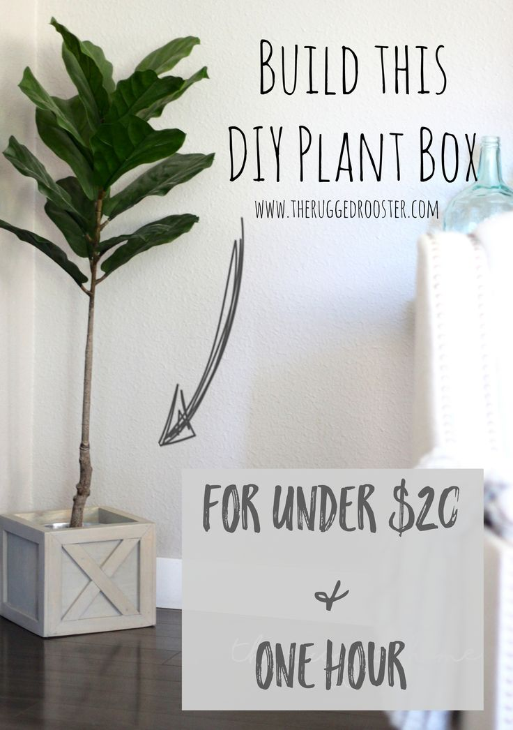 Build A DIY Plant Stand For Under 20 Dollars and One Hour, Super Easy Rustic DIY