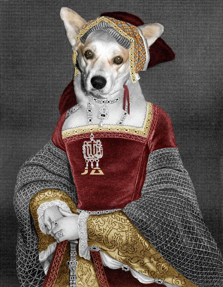 Medieval Dog SuperJA - 02 by manon ghiurco on DeviantArt
