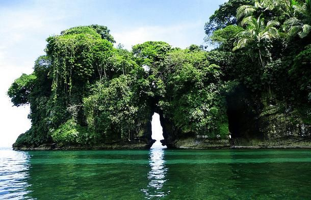 Panama Tourism and Travel: Bocas del Toro: Bird Island