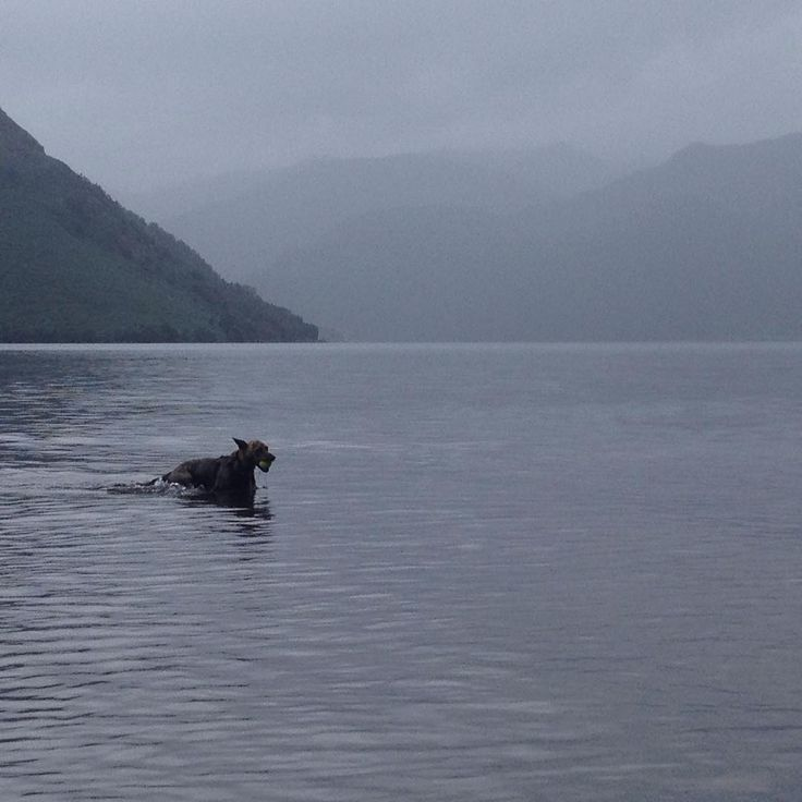 From my own lakes trip this year, this time on Ullswater, England
