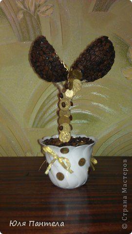 Бонсай топиарий День рождения Моделирование конструирование Кофейно-денежное дерево Кофе Ленты Монета фото 1: