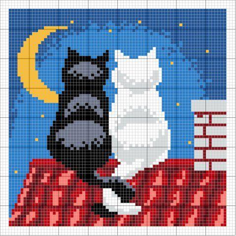 gattini e luna