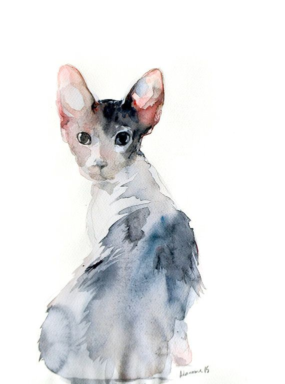 Sphynx cat, Lykoi kitten watercolor painting - portrait. Cute animal pet original drawing. A unique gift for cat lovers, wall art for home.