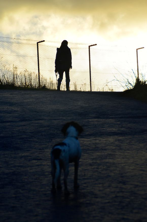 the sunsets on another walk