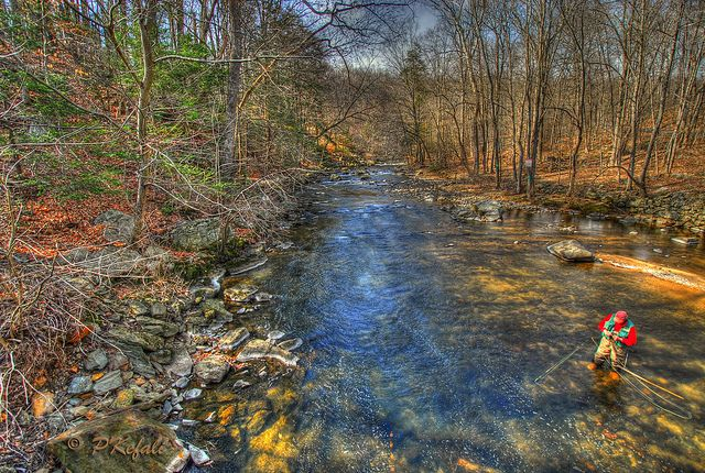 Beautiful trout stream...wish I was there fishing now...(0=