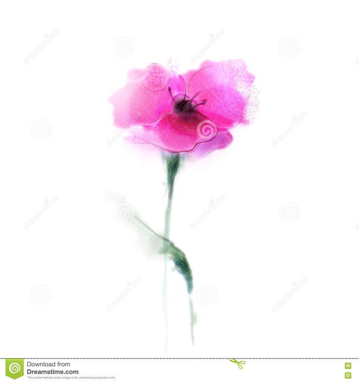 Flor de la amapola de la pintura de la acuarela Flores aisladas en fondo del Libro Blanco. Foto acerca elemento, flor, bandera, pintura, color - 72954129