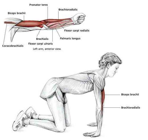 Common Shoulder Stretching Exercises | FrozenShoulder.com