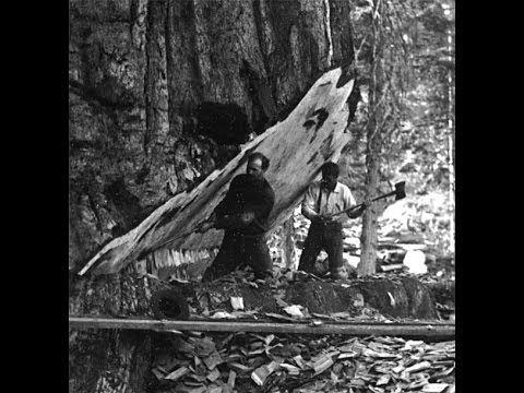Лесорубы фото история. - YouTube