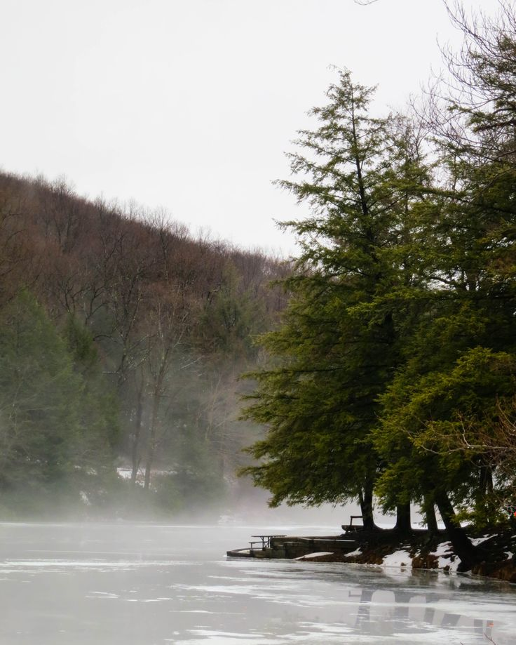 Dcnr homepage pa department of conservation and natural for Pa fishing seasons and limits 2017