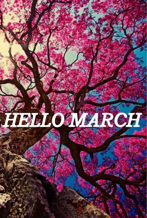 Tree Of Pink Flowers Hello March floral pink flowers march hello march march quotes