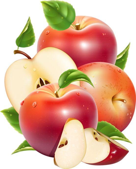 tubes fruits / légumes Ecrire un nouvel article