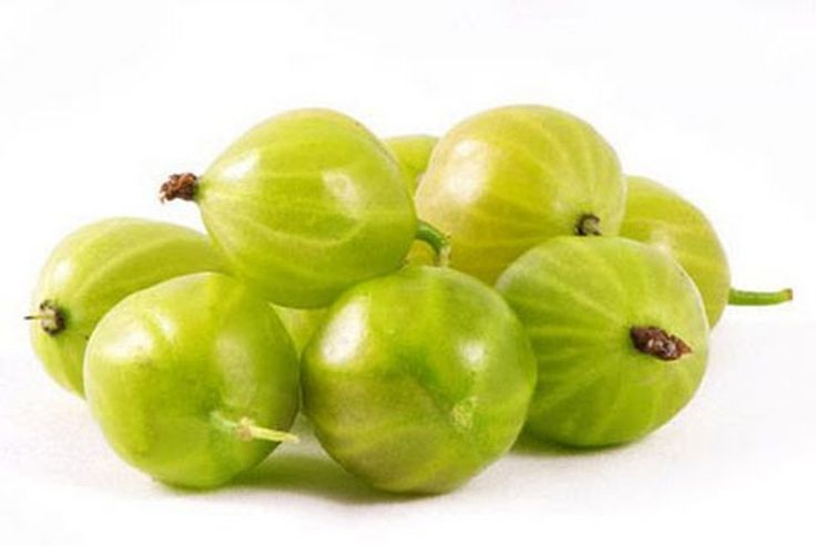 Indian Gooseberry/Amla/Amalaki - great for weight-loss with other great health benefits. Now busy testing at SA Vitamins