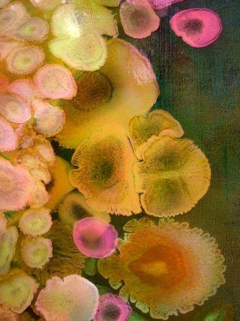 Laura Gurton: Colors Combos, Cars Collection, Beautiful Colors, Natural Beautiful, Abstract Art, Pastel Colors, Neon Colors, Laura Gurton, Art Abstract