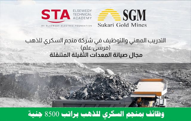 Pin By Mr Farid On ابحاث مصر In 2021 Gold Mining Movie Posters Foundation