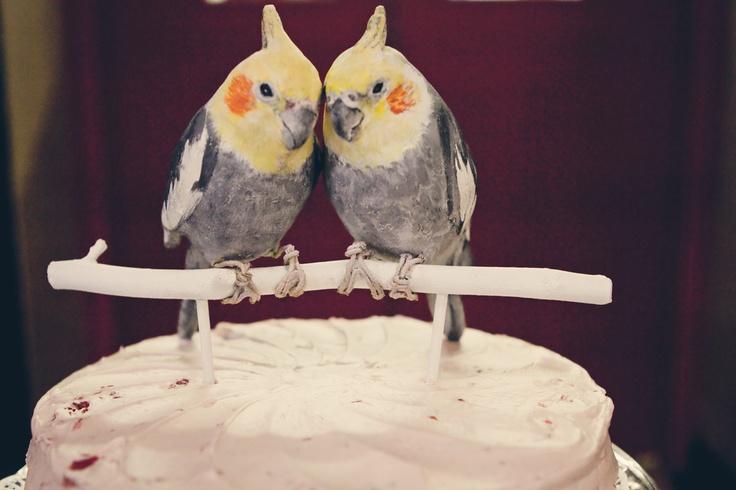 Custom Made to Order Wedding Cake Topper. $120.00, via Etsy. OMG!
