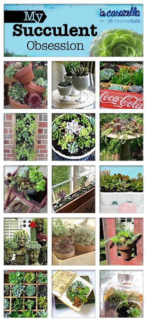 If you like succulents, you'll love these ideas! Click through for the full projects.