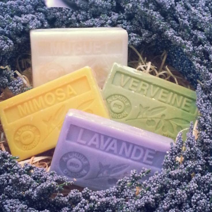 Lavande ~ Lavender ✿⊱╮