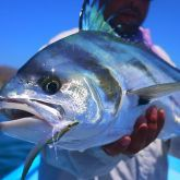 Cabo San Lucas is a world destination for marlin fishing. It is considered the Marlin capital of the world. You can enjoy best deep sea fishing here at reasonable priced charters. Click the link to enjoy marlin fishing Cabo.   #marlinfishingCabo