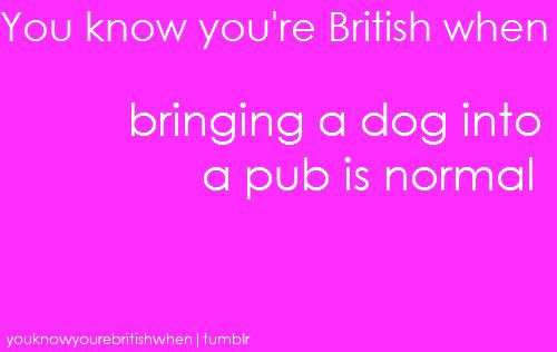 you know youre british when  . . .