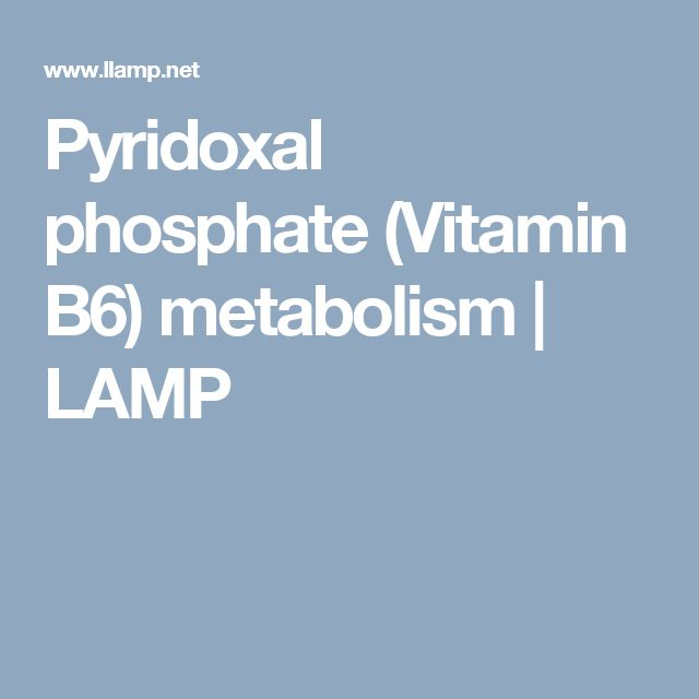 Pyridoxal phosphate (Vitamin B6) metabolism | LAMP