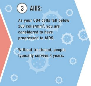 Stages of HIV infection - 3) AIDS: As your CD4 cells fall below 200 cells/mm3, you are considered to have progressed to AIDS. Without treatment, people typically survive 3 years.