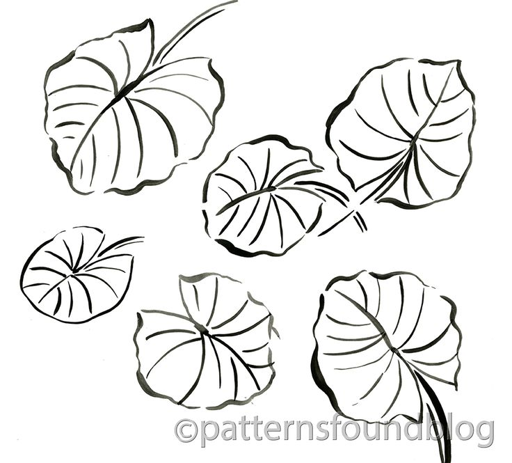 40 best Plant and Flower Coloring Pages images on
