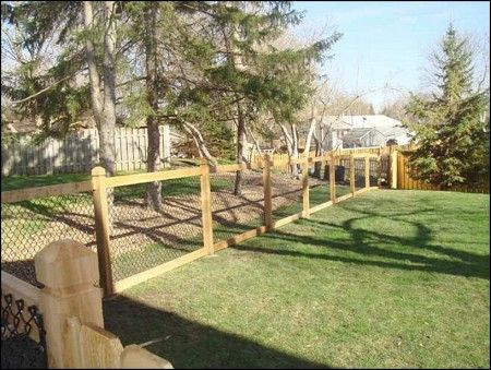 Chain Link Fence With Wood Posts Outdoors Fencing