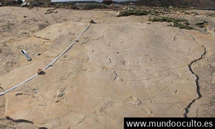 Huellas descubiertas en Creta pueden obligar a revisar la cronología de la evolución humana