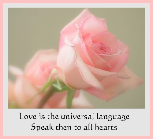 love is a universal language Romantic love is a universal emotion present in various cultures and how similar and different the attitudes to love and love experience are in different cultures and time periods.