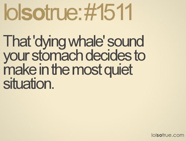 That 'dying whale' sound your stomach decides to make in the most quiet situation.