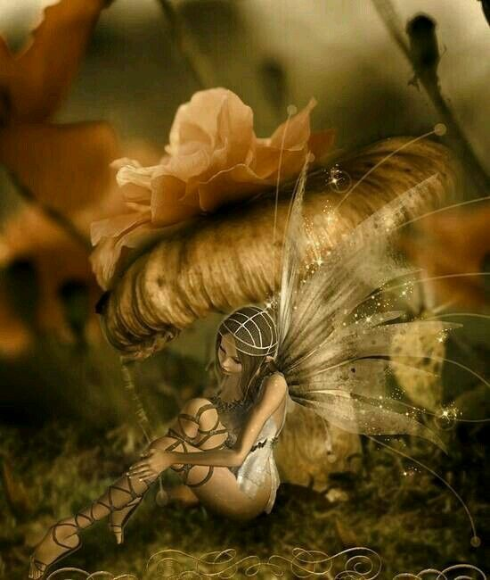 4649 best images about fairy on pinterest amy brown for Fairy on a mushroom drawing