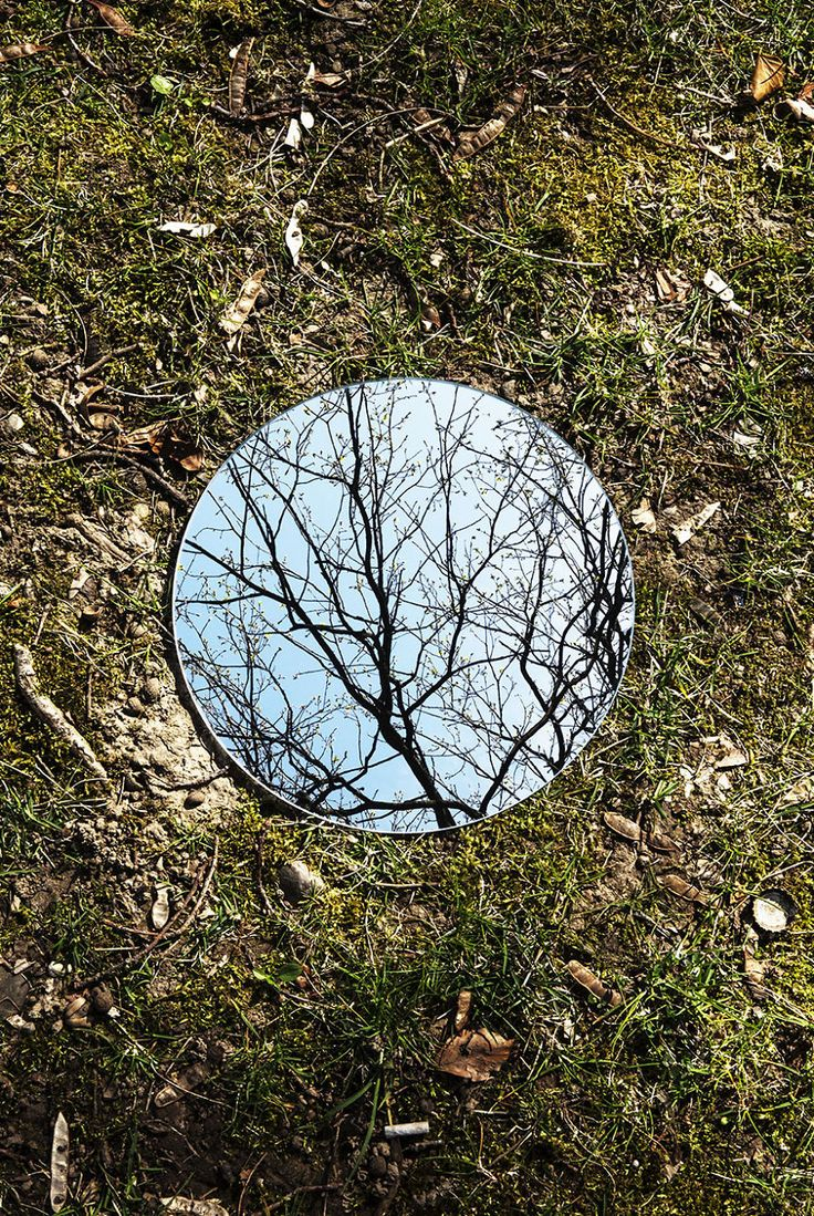 Symmetry And Silence In Round Mirror Reflections | Bored Panda