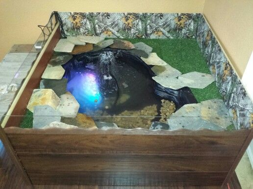 Indoor turtle pond turtle fish tanks pinterest Diy indoor turtle pond