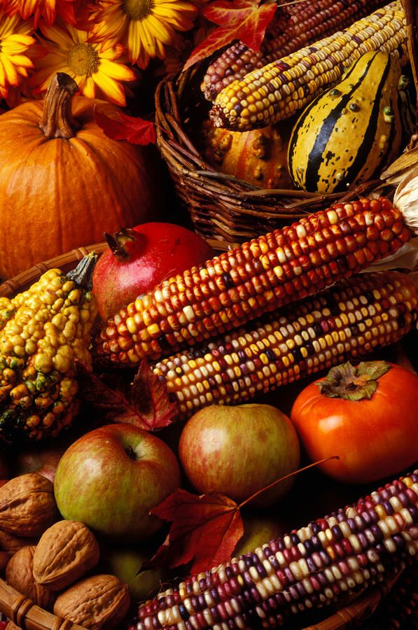 North American autumn harvest - corn and squashes are native to the America (not apples or walnuts)