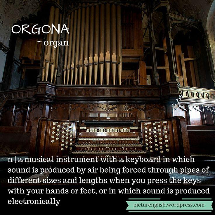 Organ / orgona.