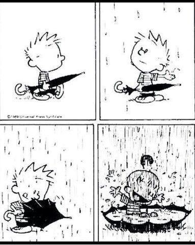 It's Rainning! Be Happy!