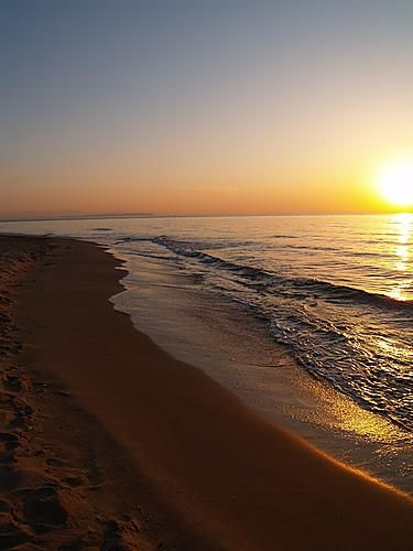 Playa Les Ortigues en Guardamar del Segura Alicante
