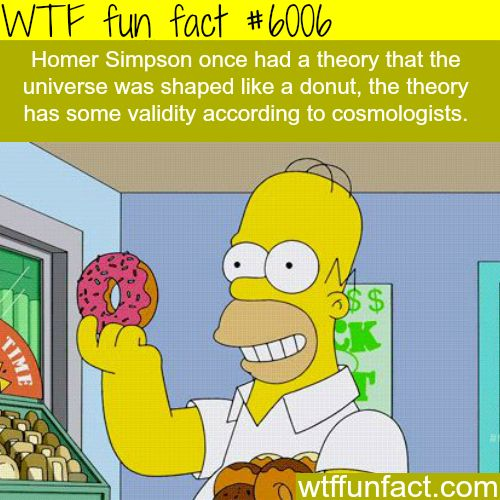 Homer Simpson's theory about the shape of the universe - WTF fun facts