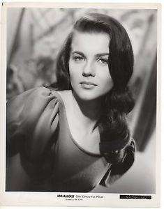 ANN-MARGRET-8-034-x10-034-Original-B-amp-W-1960s-Lovely-Versatile-amp-Talented